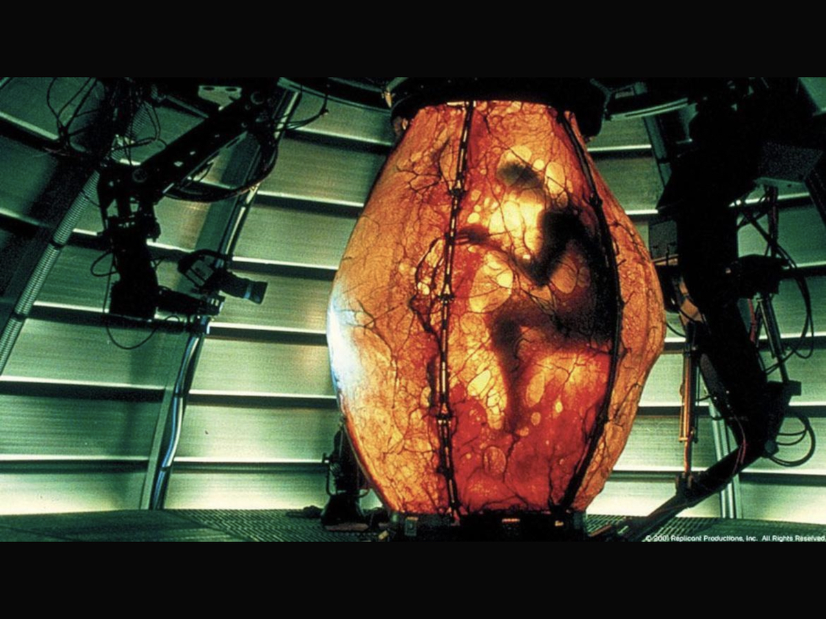 The Replicant in his birthing sack.